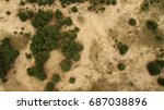 Desert And Green Bushes