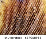 the photo shows beehive honey... | Shutterstock . vector #687068956