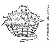 cute kittens in the basket