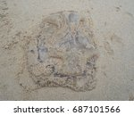 dead jelly fish on the beach. | Shutterstock . vector #687101566