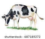 Black And White Cow Isolated O...