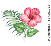 red hibiscus flowers and palm... | Shutterstock . vector #687201796