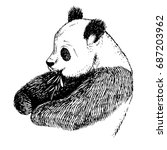 sketch panda with bamboo.... | Shutterstock .eps vector #687203962