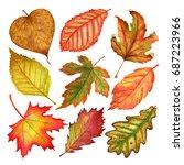 watercolor autumn leaves... | Shutterstock . vector #687223966