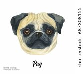 portrait cute dog isolated on... | Shutterstock . vector #687308155