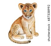 Stock photo lion baby watercolor isolated on white background watercolor illustration image picture 687338992