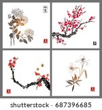 sakura blossom  chrysanthemum...