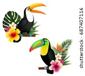 toucan set | Shutterstock . vector #687407116