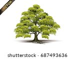 tree isolated on a white... | Shutterstock .eps vector #687493636