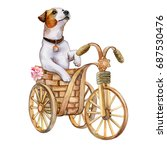 jack russell dog on a bicycle... | Shutterstock . vector #687530476