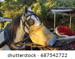 White Horse Carriage. Close Up