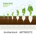 vector illustration in flat... | Shutterstock .eps vector #687583372