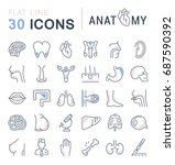 set vector line icons  sign and ... | Shutterstock .eps vector #687590392