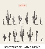 set of cacti illustrations ... | Shutterstock .eps vector #687618496