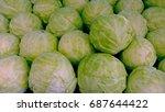 cabbage | Shutterstock . vector #687644422