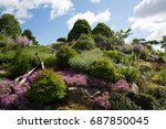 botanical garden | Shutterstock . vector #687850045