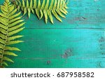 frame from fresh fern leaves on ... | Shutterstock . vector #687958582