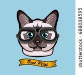 cute pilot cat face traveler... | Shutterstock .eps vector #688038595