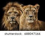 lion couple   Shutterstock . vector #688047166