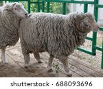 omsk  russia   july 23  2017 ... | Shutterstock . vector #688093696
