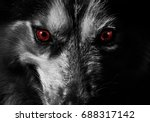 mad dog look at you  | Shutterstock . vector #688317142