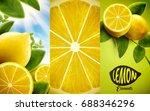 lemon and green leaves elements ... | Shutterstock .eps vector #688346296
