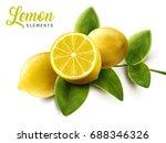 lemon and green leaves elements ... | Shutterstock .eps vector #688346326