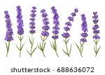 beautiful lavender flowers...   Shutterstock .eps vector #688636072