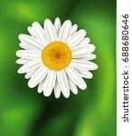 chamomile flower background.... | Shutterstock .eps vector #688680646