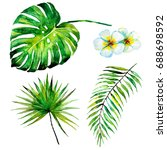 beautiful set with palm leaves... | Shutterstock . vector #688698592