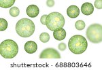 single cell algae with lipid... | Shutterstock . vector #688803646