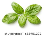 green basil leaves isolated on... | Shutterstock . vector #688901272