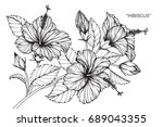 hibiscus flowers drawing and... | Shutterstock .eps vector #689043355