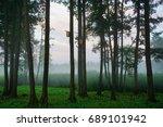 the park of birds | Shutterstock . vector #689101942