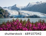 Small photo of View of Portage glacier in the Chugach mountains and Portage lake on the background and pink blooming fireweed on the foreground. Shot in the USA, Alaska, in summer.