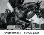 equestrian sports  horse... | Shutterstock . vector #689211835