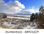 Winter Lake Eagle Near...