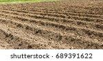 preparation of soil for... | Shutterstock . vector #689391622