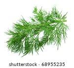 fennel branch on a white... | Shutterstock . vector #68955235