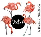 Vector Flamingo Pink Rose...