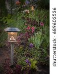Small photo of Solar-powered lights on a bed between petunia, irises and coleus on night.