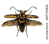insect stipple drawing isolated ... | Shutterstock .eps vector #689720836