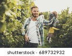 young people harvesting grapes...   Shutterstock . vector #689732932