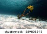 woman freediver explores... | Shutterstock . vector #689808946