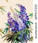lupine  flowers  watercolor. | Shutterstock . vector #689917252