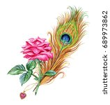peacock feather  rose and a... | Shutterstock . vector #689973862
