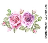 lilac roses.watercolor | Shutterstock . vector #689985328