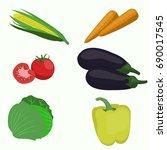 set of vegetable on white... | Shutterstock .eps vector #690017545