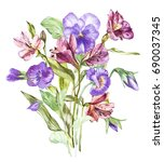 spring flowers pansy and... | Shutterstock . vector #690037345