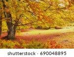 landscape nice fantasy forest... | Shutterstock . vector #690048895